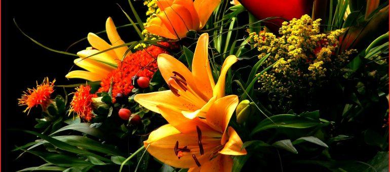 Ostern steht an - Wie hoch sind die Erwartungen an Geschenken?