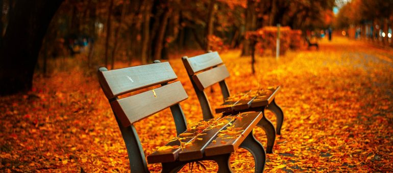 Geschenke im Herbst
